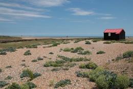 Red hut, Rye Harbour