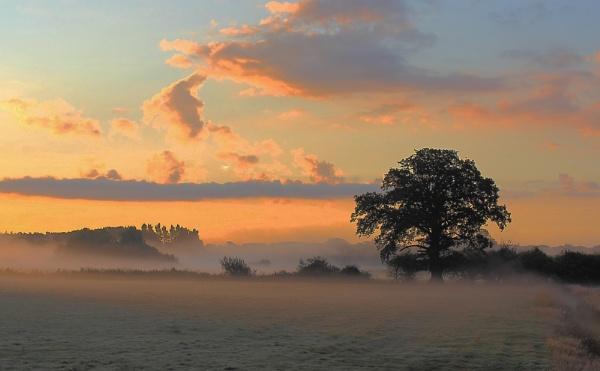 Morning Mist by CDSINUK