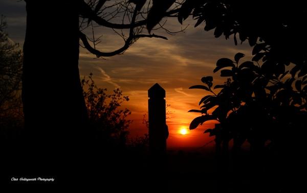 Sunset Walk by CBH