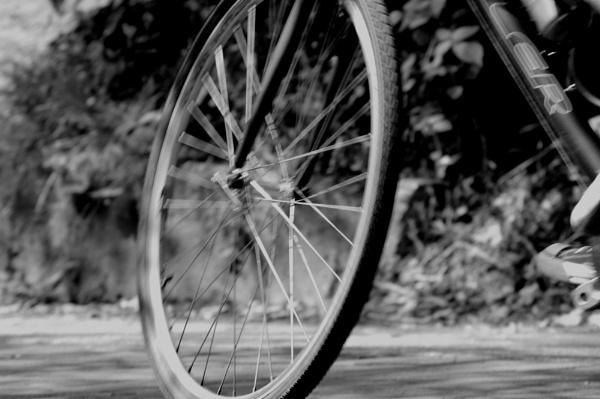 Wheels in motion by AnnMarieJ