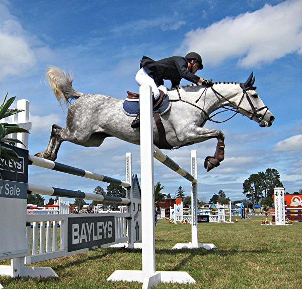 Flying Horse by MaryFaith