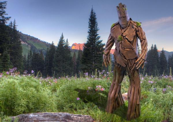 Groot by hirschi