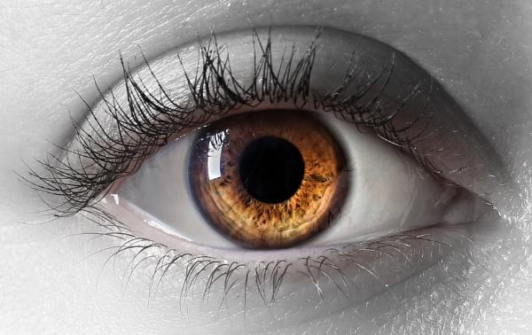All Seeing Eye by Bogwoppett