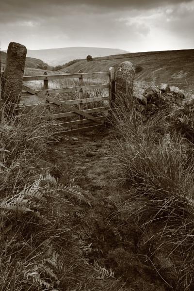 Mossy Moor Gate by rammy62