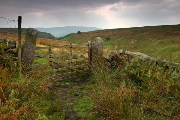Moody Dale gate by rammy62