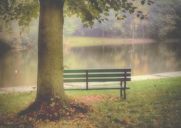 dream autumn morning by atenytom