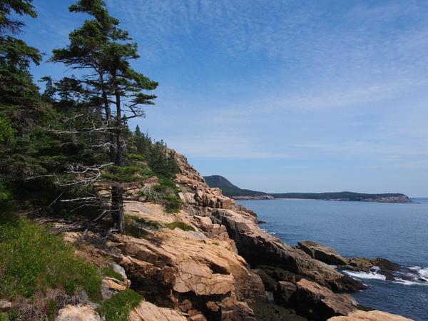 Summer in Maine # 45 by handlerstudio