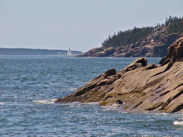 summer in Maine # 46 by handlerstudio