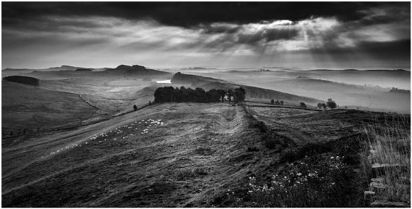 Northern Light by Nigeve1