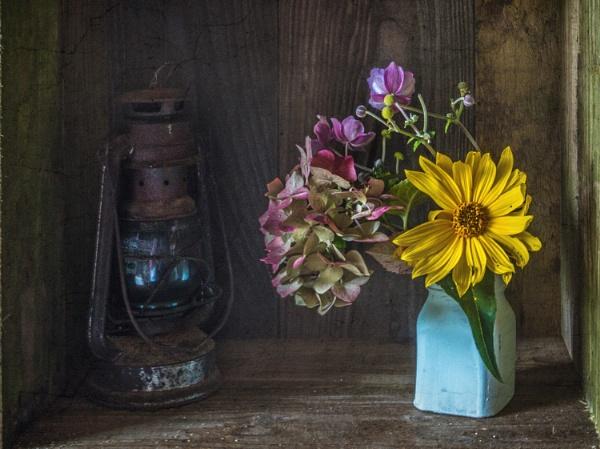 lamp & bottle by maywee