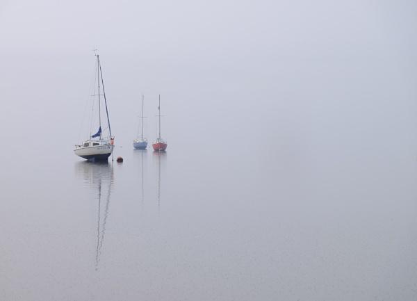 Misty Trio by clive burrow