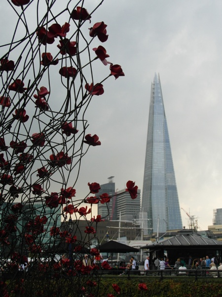 Poppies and The Shard. by neonknight