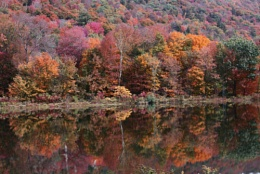 Fall Foliage Reflected In A Remote Vermont Pond