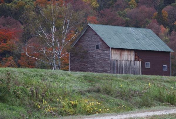 A Barn Against The Autumn Foliage by gconant