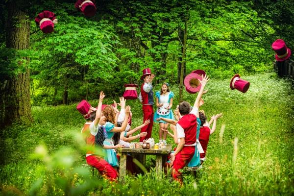 Alice in Wonderland by Archangel72