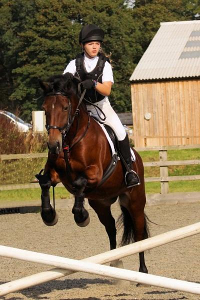 Tidworth Equestrian by Alexjb