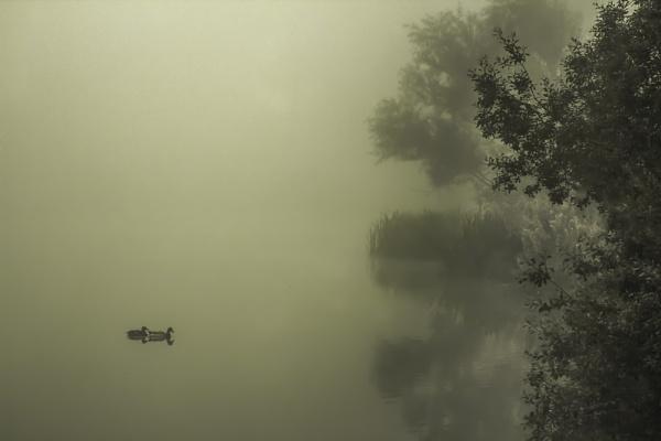 misty morn by Satiny