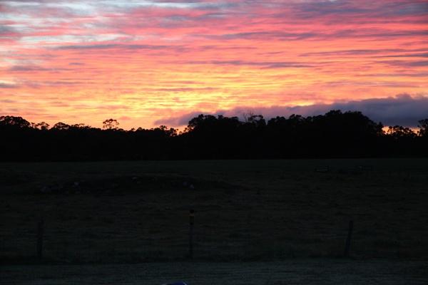 Sunrise by myimage