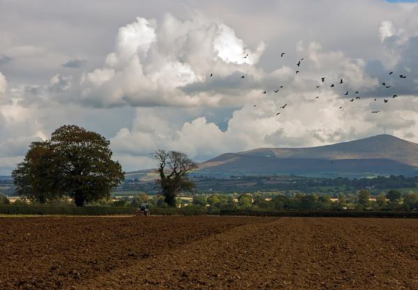 Autumn ploughing, Ireland by jameswburke