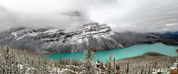 Peyto Lake by CathyT