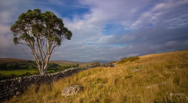 Brecon Beacons by GavF
