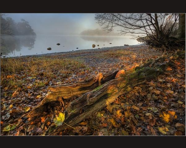 Autumn Colours #3 by scragend