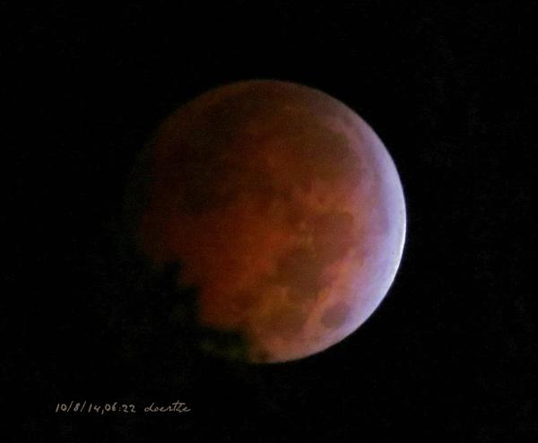 Blood Moon by doerthe