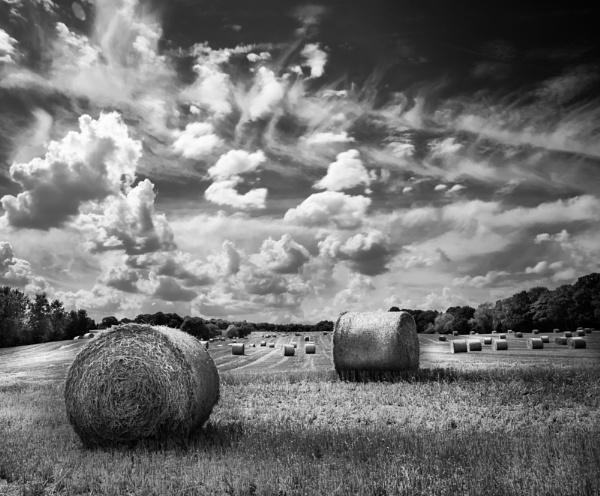 Summer Bales by gerainte1