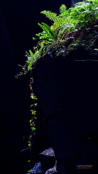 Cavern Cascade by Weirdfish695