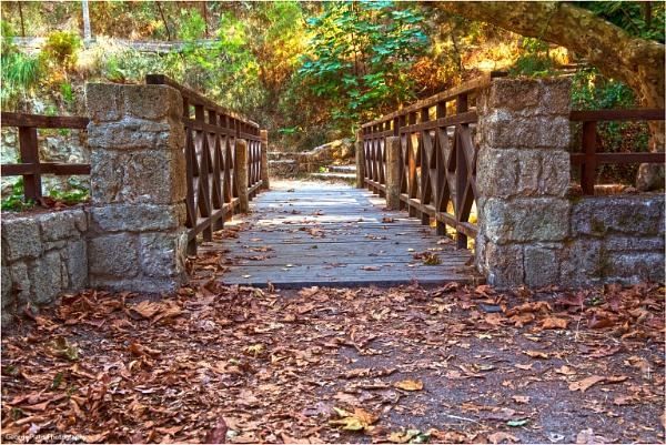 The bridge way by GeorgePlatis