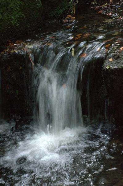 Autumn Stream by KenQuinn