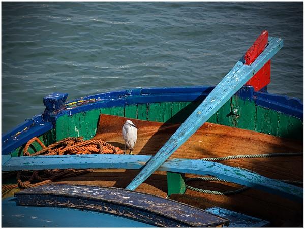 Venice #6 by Coast