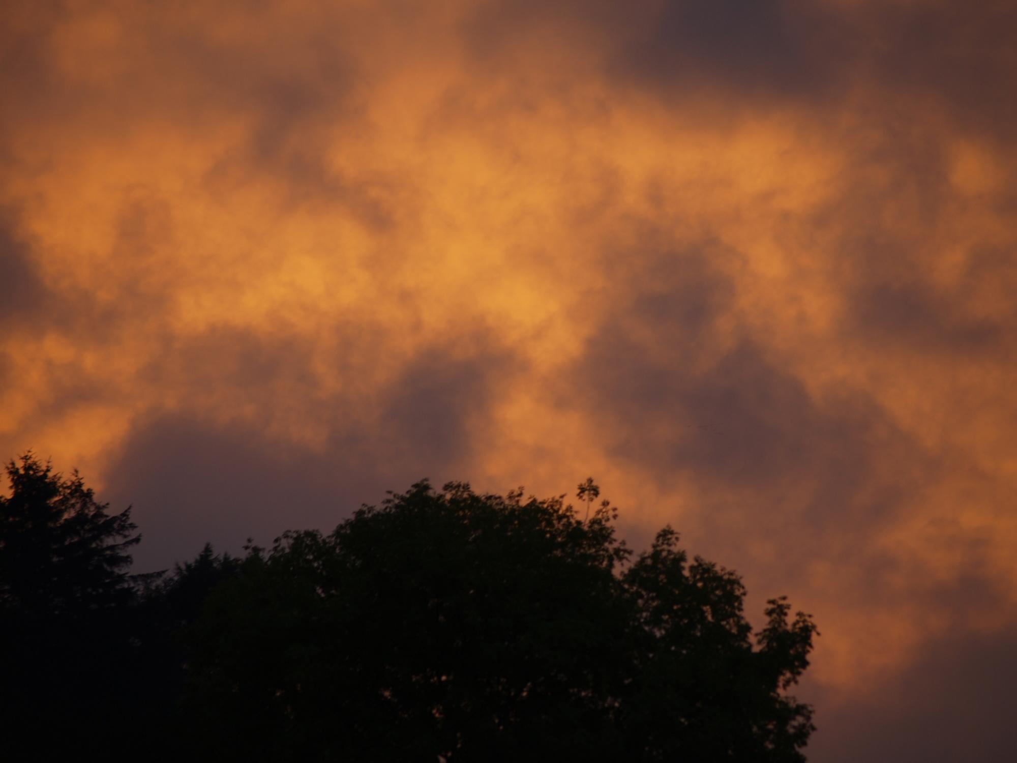 Flaming Sunset!