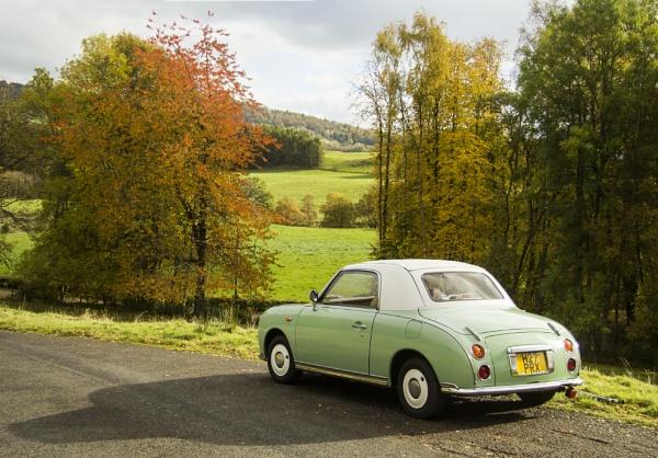 Emerald Figaro in Autumn by Irishkate