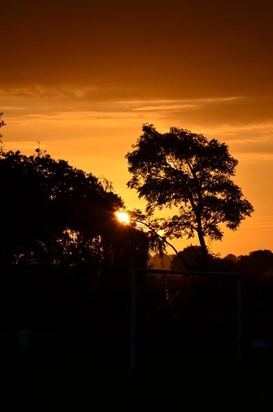 Setting Sun by elizabethapike62