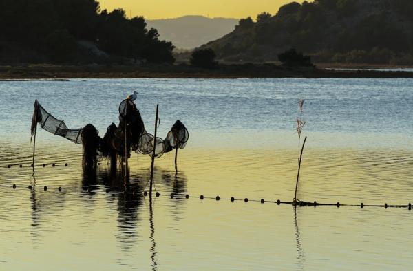 Eel nets, Étang de Gruissan by Gaucho