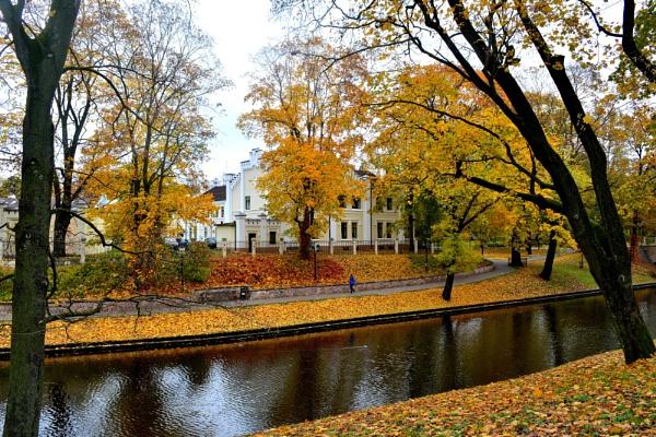 Golden autumn in Riga. by alan2603