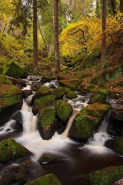 Autumn, Wyming Brook by martin.w