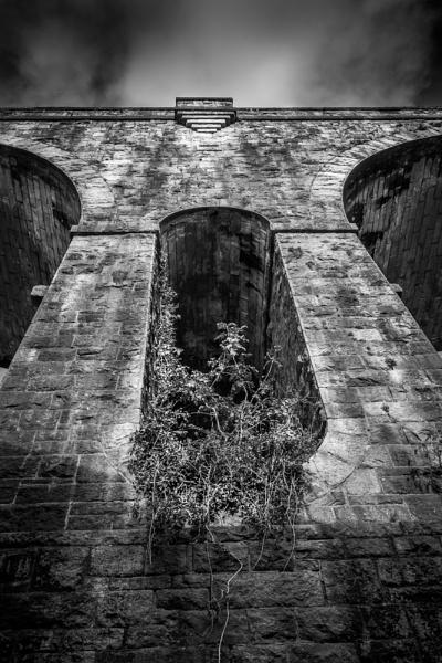 Tavistock Viaduct by jer