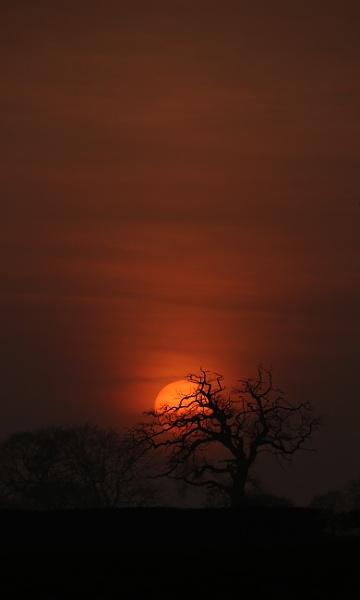 The Orange Sun by ahughes3