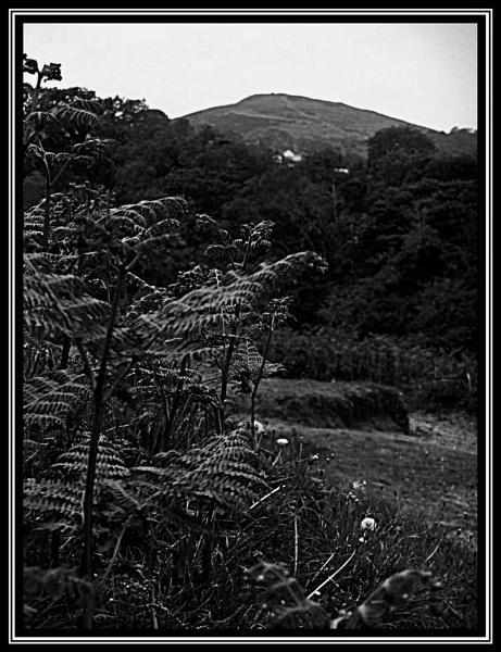 Cefn Bryn by ross15775