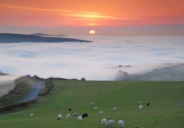 Exmoor sunset by NippyN