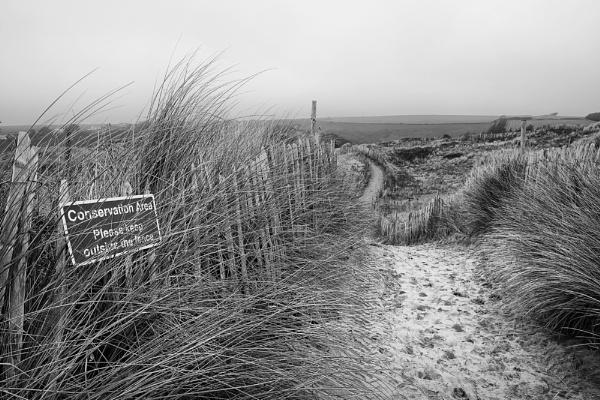 Beach sand dunes by ilocke
