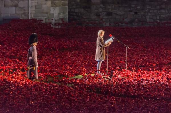 Naming the Fallen. by Kim Walton