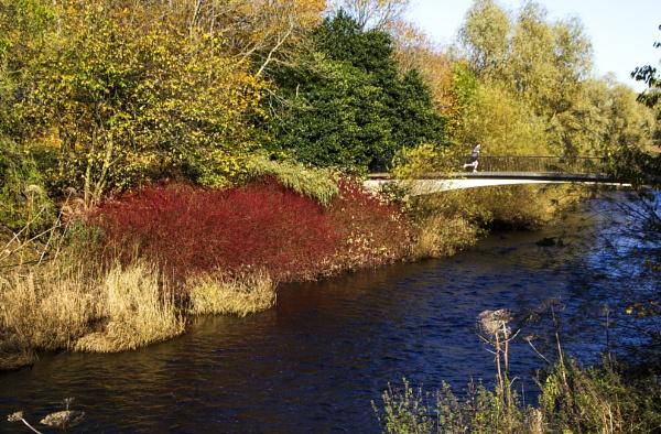 Jogger on the Bridge by Irishkate