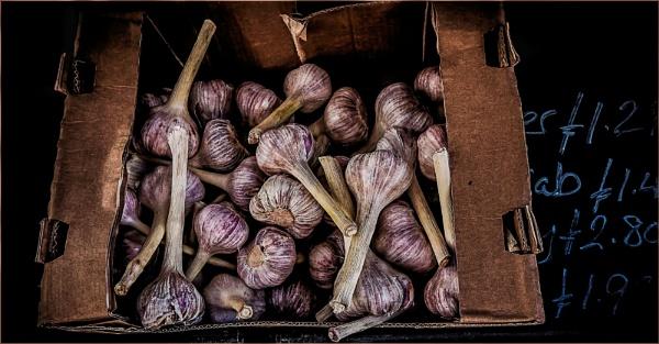 Red Garlick by Berniea