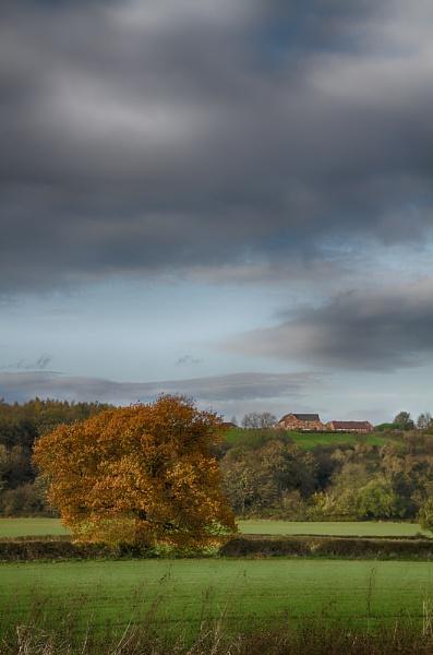 Autumn Colour by ahughes3