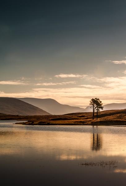 Loch Droma Tree by cisco4611