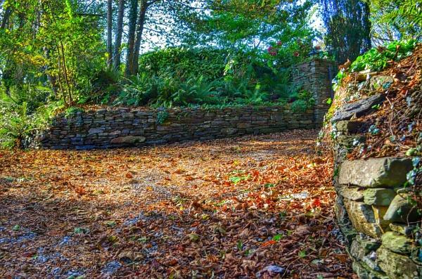 Autumn by scruffytrafford