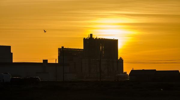 Sunset by Nikonuser1